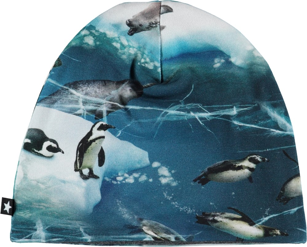 Ned - Antarctica - Baby hat with penguins.