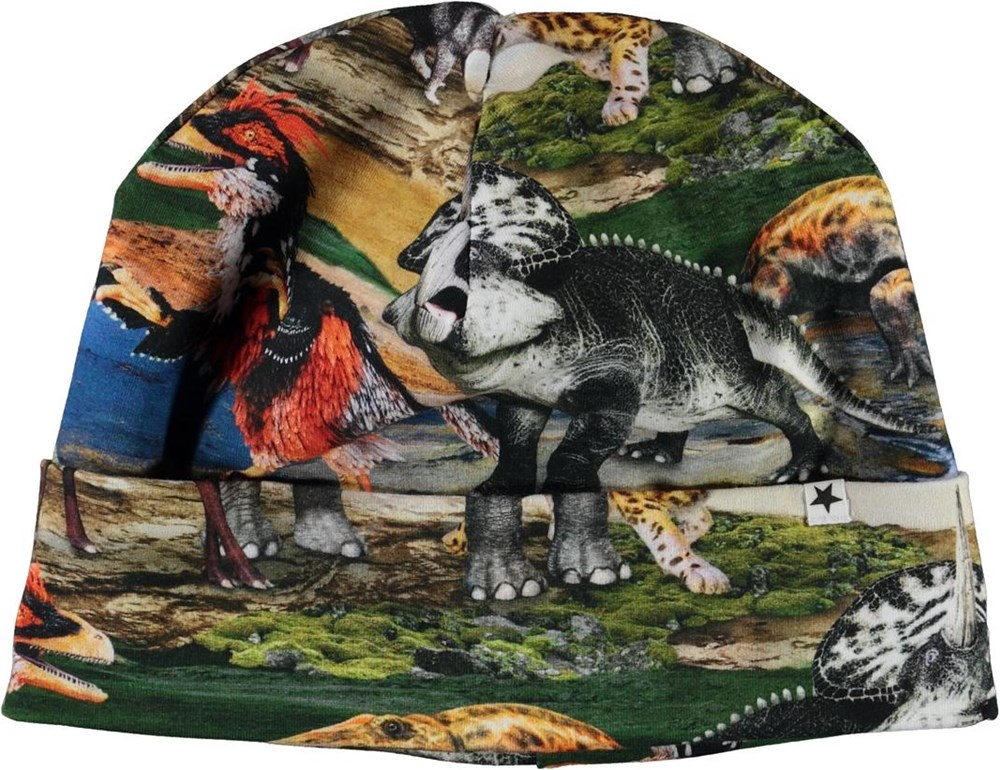 Nico - Ancient World - Hat with animal print