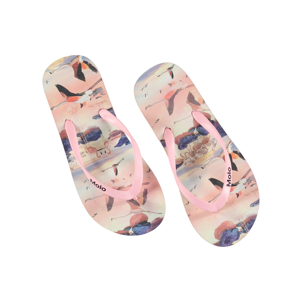 Zeppo - Flamingo - Flip flops with flamingos.