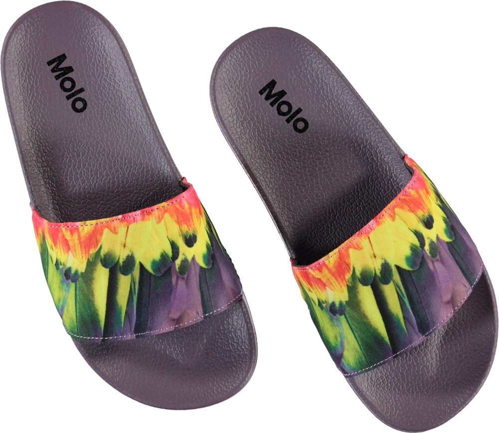 Zhappy - Amazon Parrots - Purple slippers with feather print
