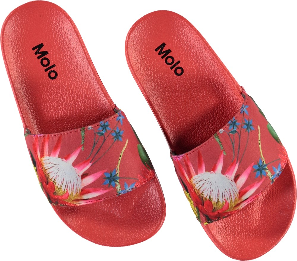 Zhappy - Australian Flowers - Red slippers with flower print.