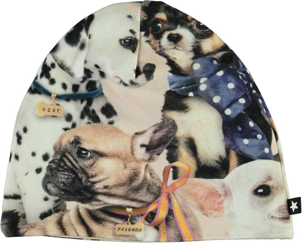 Ned -  Puppy Love - Økologisk babyhue med hunde print