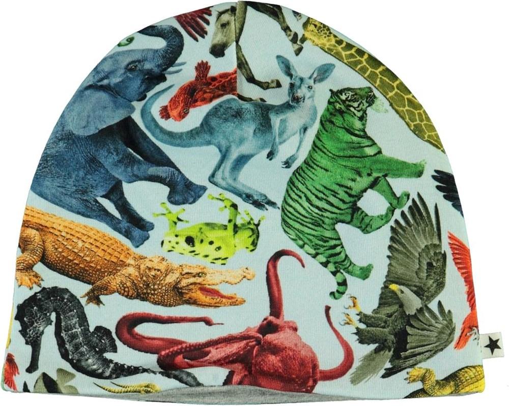 Ned - Colourful Animals - Økologisk lyseblå babyhue med dyre print