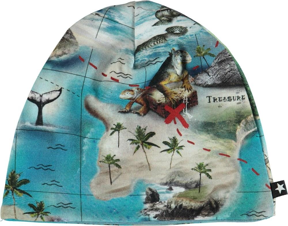 Ned - Treasure Map - Hue