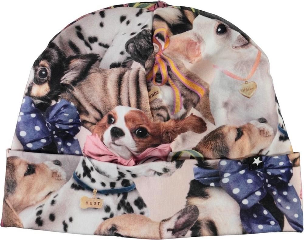 Nico -  Puppy Love - Hue med print af hunde