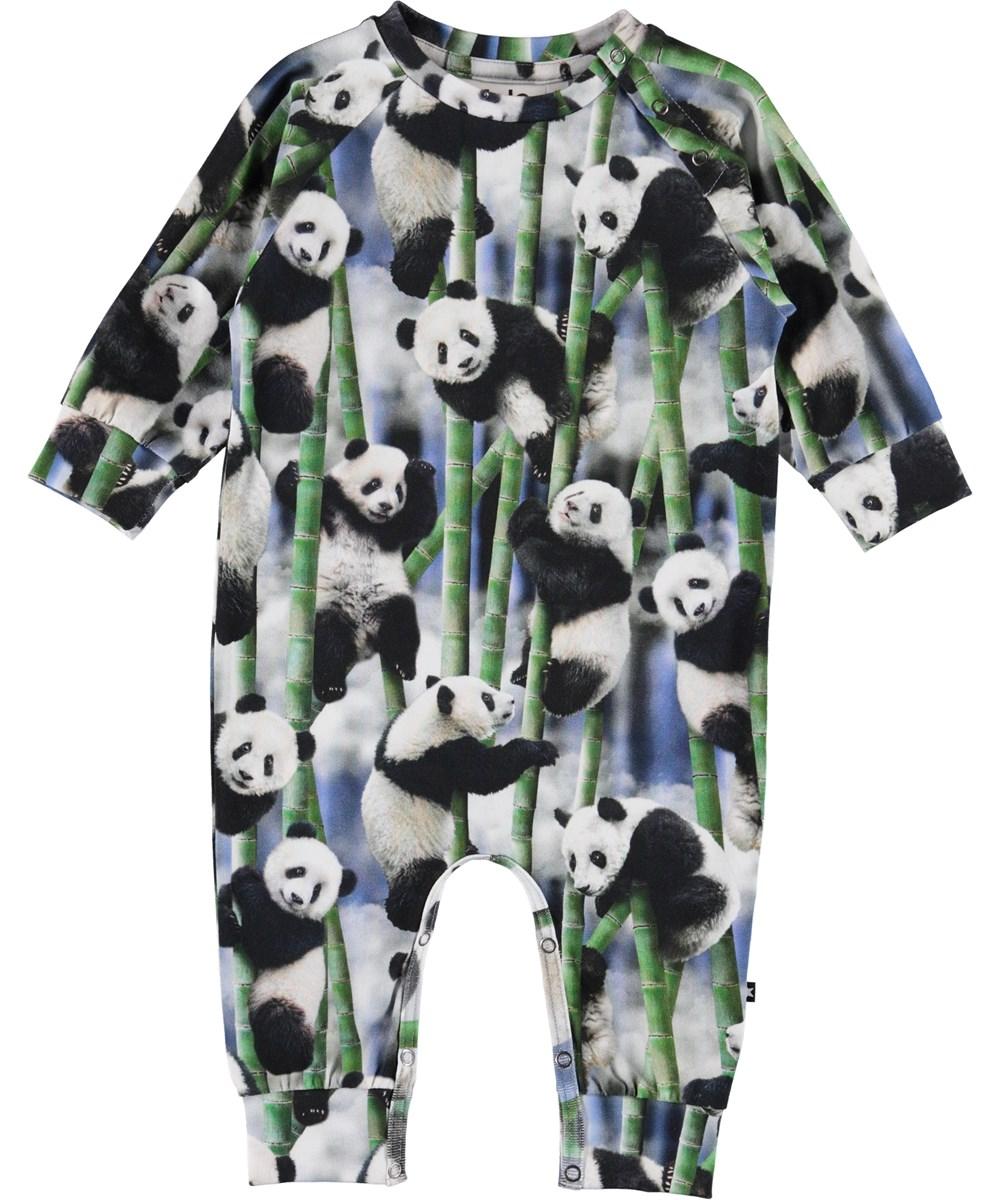 Fairfax - Panda - Organic baby bodysuit with pandas