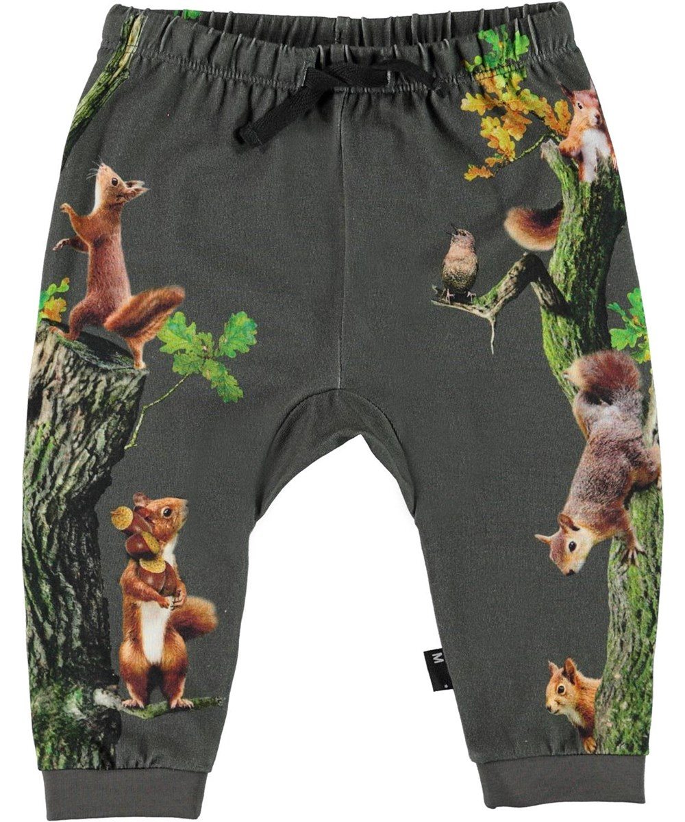 Sabbe - Beluga - Green organic baby trousers with squirrel