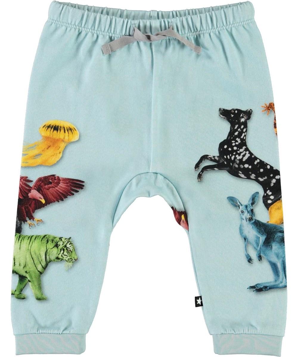 Sabbe - Colour Friends - Light blue organic baby trousers