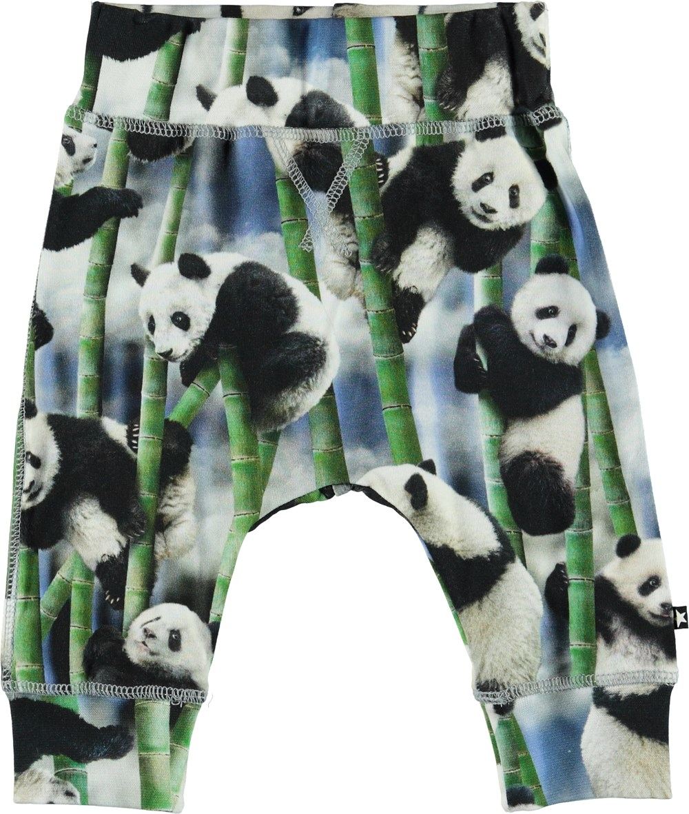 Sammy - Panda - Organic baby trousers with pandas