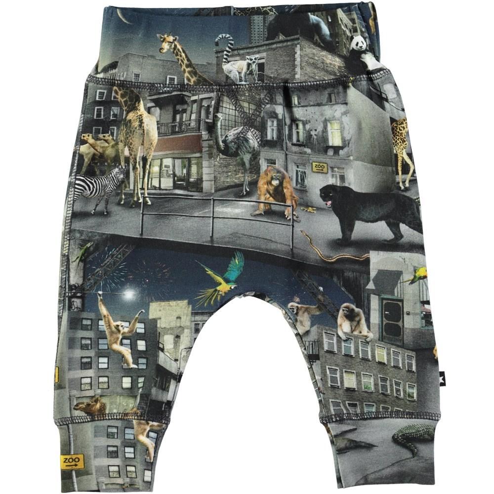 Sammy - Zoo Rebellion - Roomy baby trousers with digital zoo print