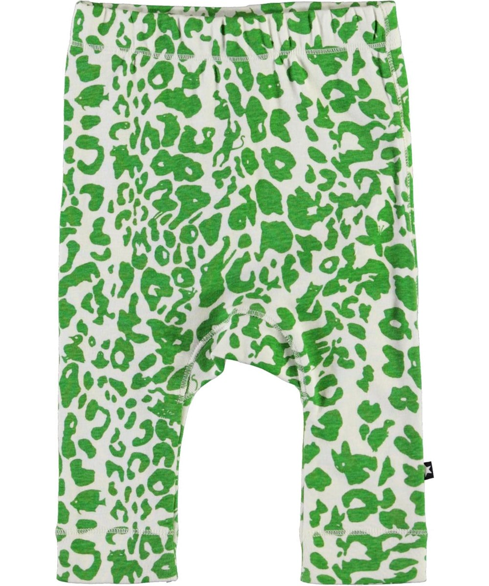Seb - Leopard Animals - Baby trousers with green leopard print
