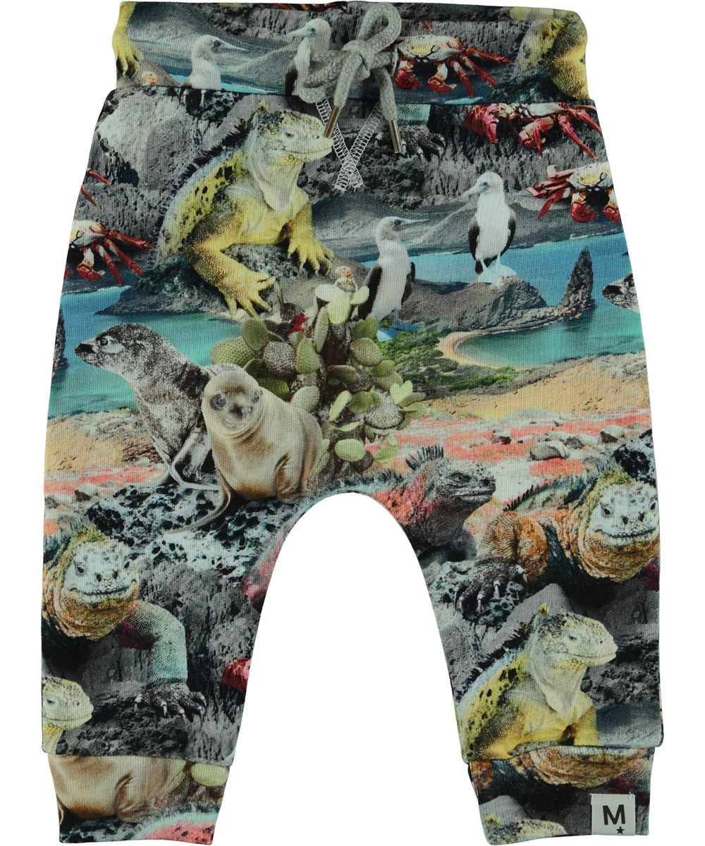 Solom - Galapagos Wildlife - Baby Trousers