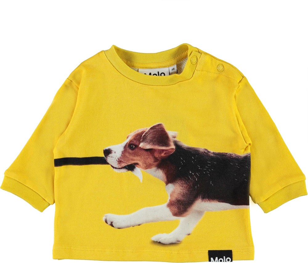 Dan - Chasing Tail - Yellow organic baby top with dogs