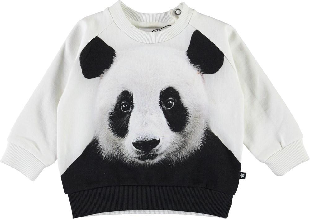 Disco - Panda Face - White baby sweatshirt with panda