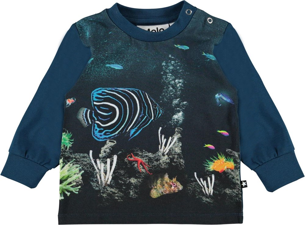 Eloy - Small Fish - Blue organic baby top with fish