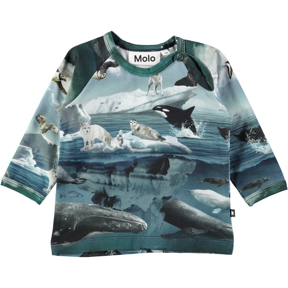 Ewald - Arctic Landscape - Long sleeve baby top with digital arctic landscape print