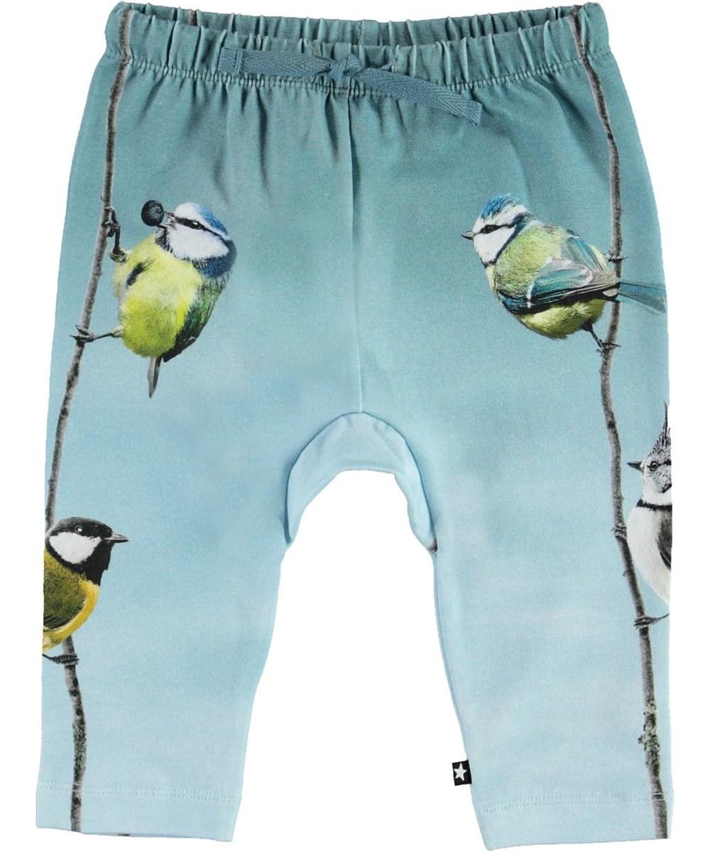 Sabb - Birds Friends - Økologiske lyseblå baby bukser med fugle