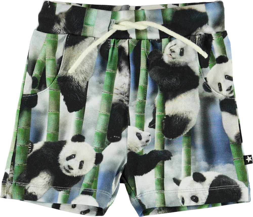 Simroy - Panda - Økologiske baby shorts med pandaer