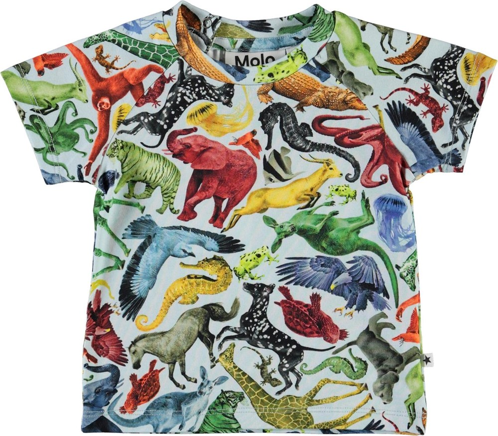 Emmett - Colourful Animals - Økologisk baby t-shirt med dyr