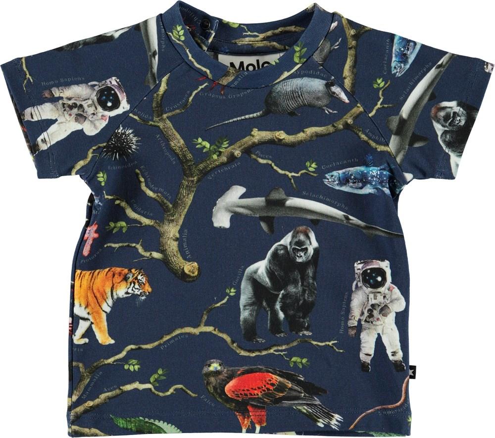 Emmett - Tree Of Life - Økologisk baby t-shirt med dyr