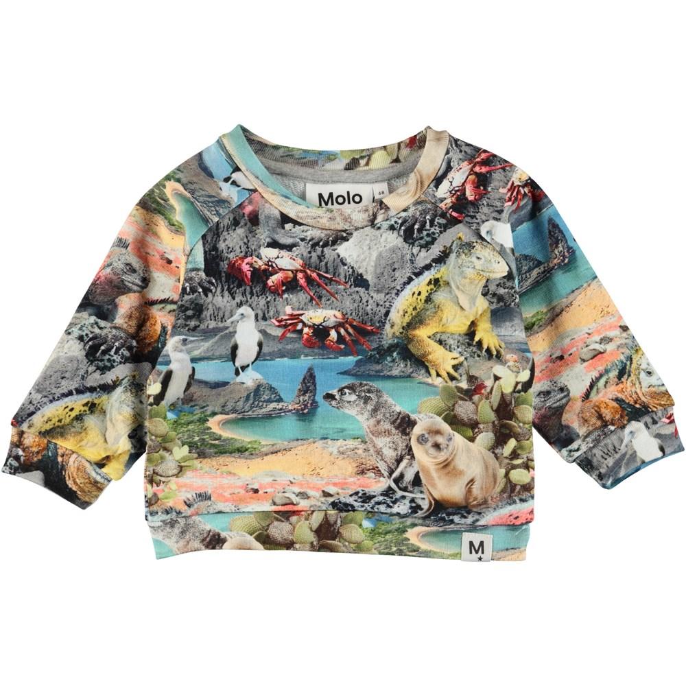 Dag - Galapagos Wildlife - Baby Sweatshirt