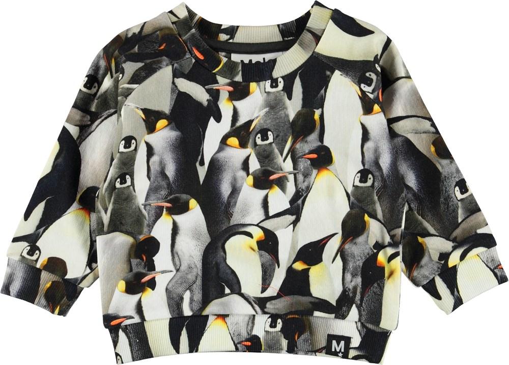 Dag - Penguins Galore - Baby sweatshirt med pingviner.