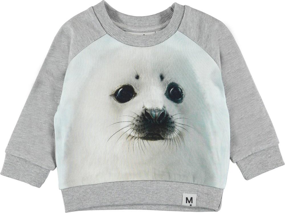 Dag - Seal Pup - Grå baby sweatshirt med sæl.