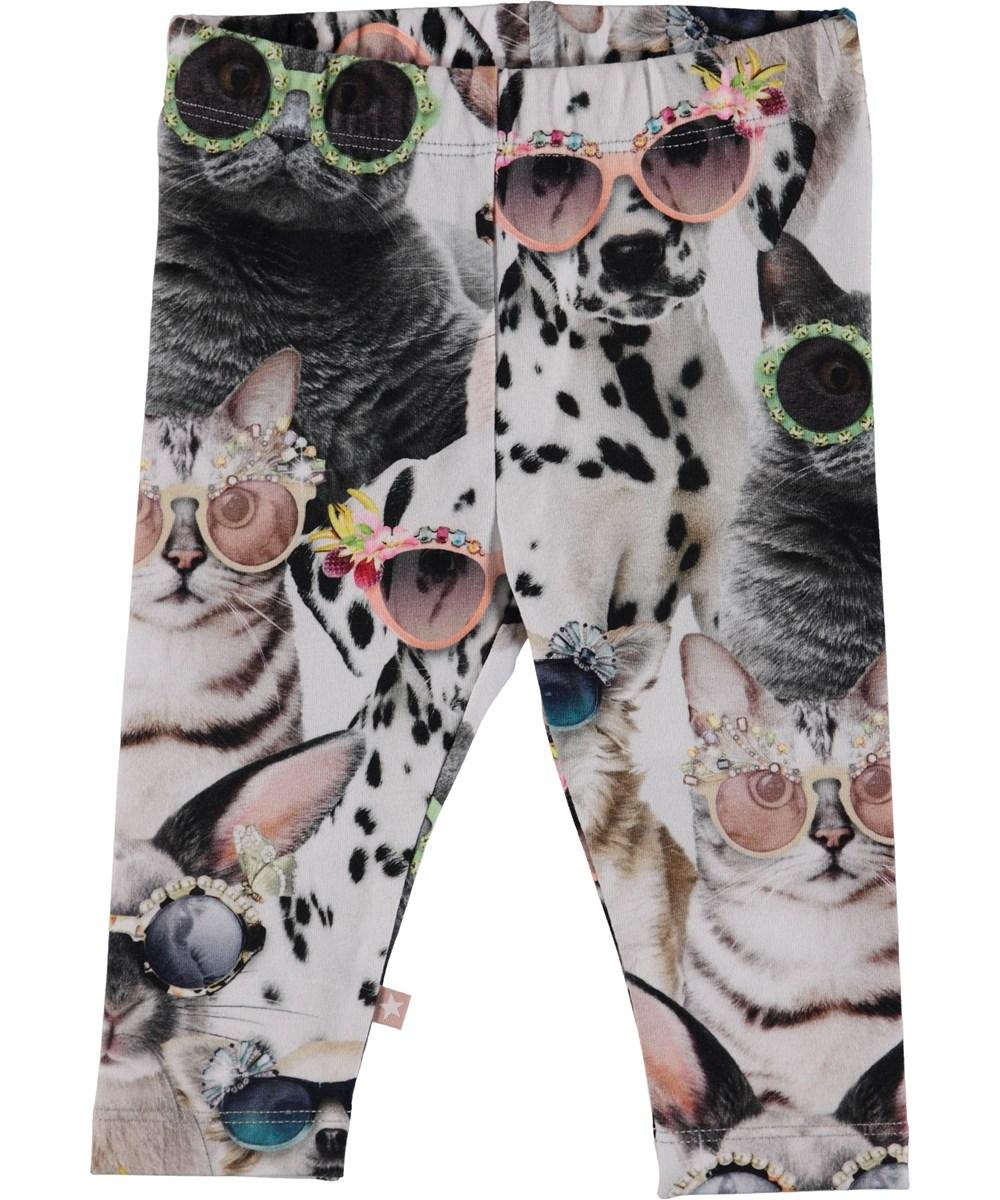 Stefanie - Sunny Funny - Baby leggings med tryck av djur.