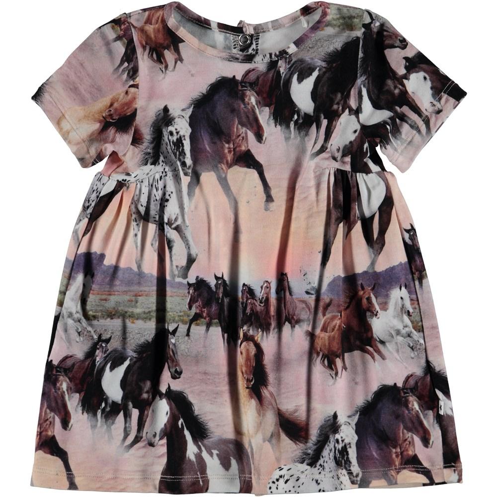 Calypso - Wild Horses - Baby Dress