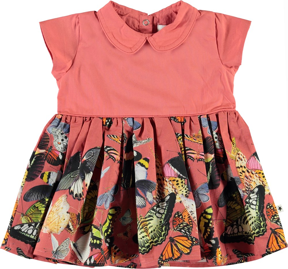 Cinna - Baby Papillon - Baby dress with collar and butterflies