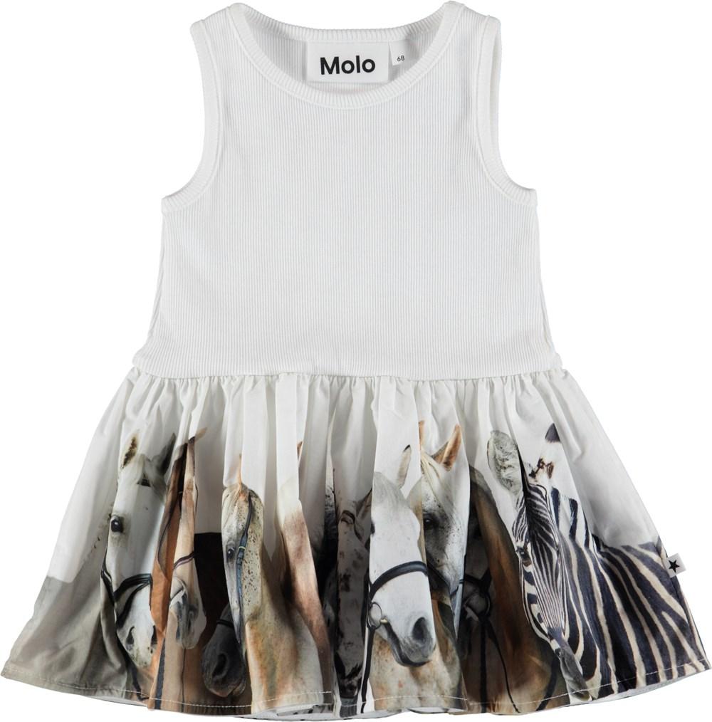 Cordelia - Horse Stripe Baby - Baby Dress