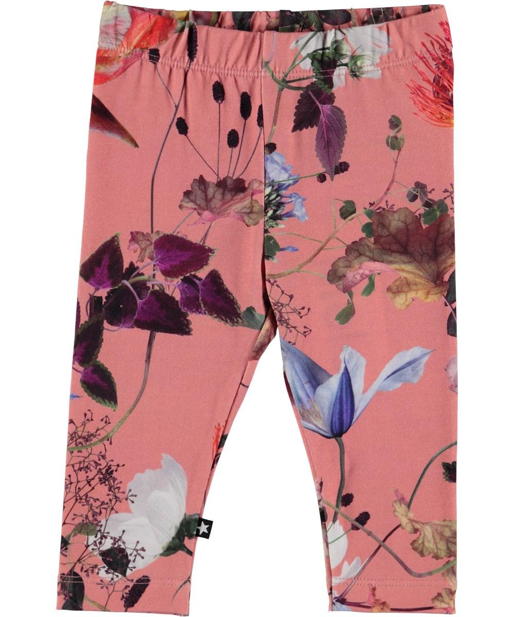 Stefanie - Flowers Of The World - Flowered baby leggings.