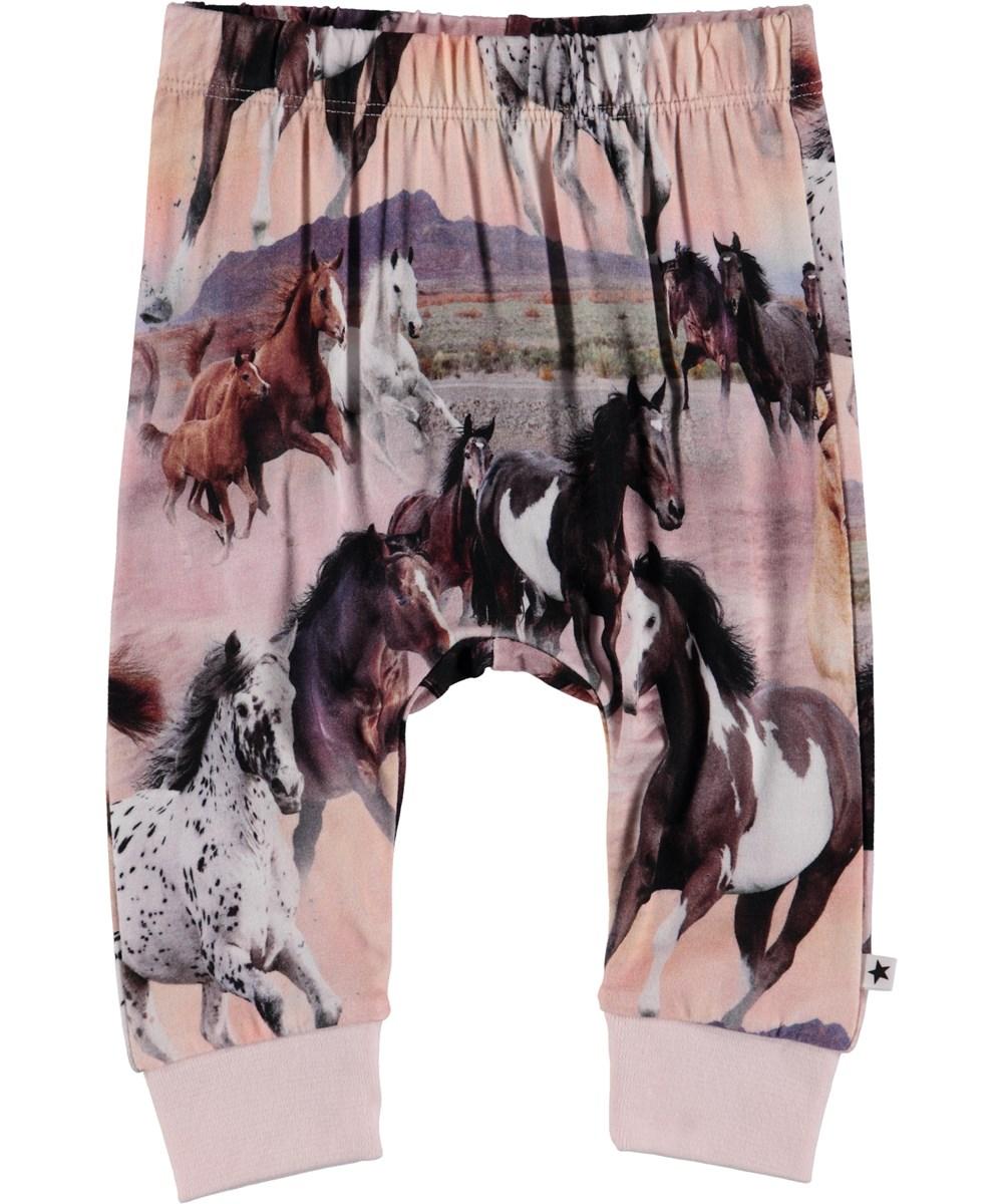 Simone - Wild Horses - Baby Trousers