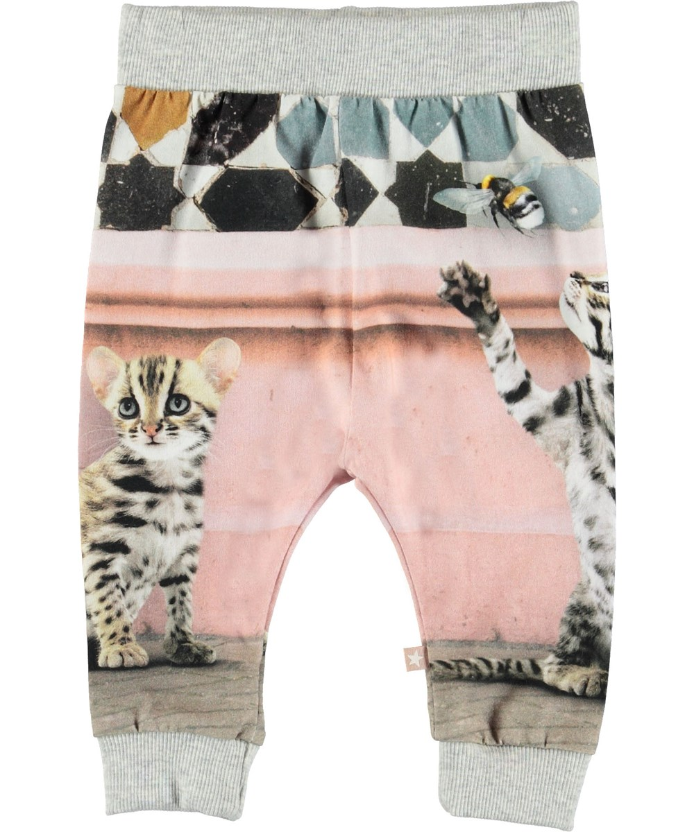 Susanne - Bengal Kittens - Baby trousers with cats.