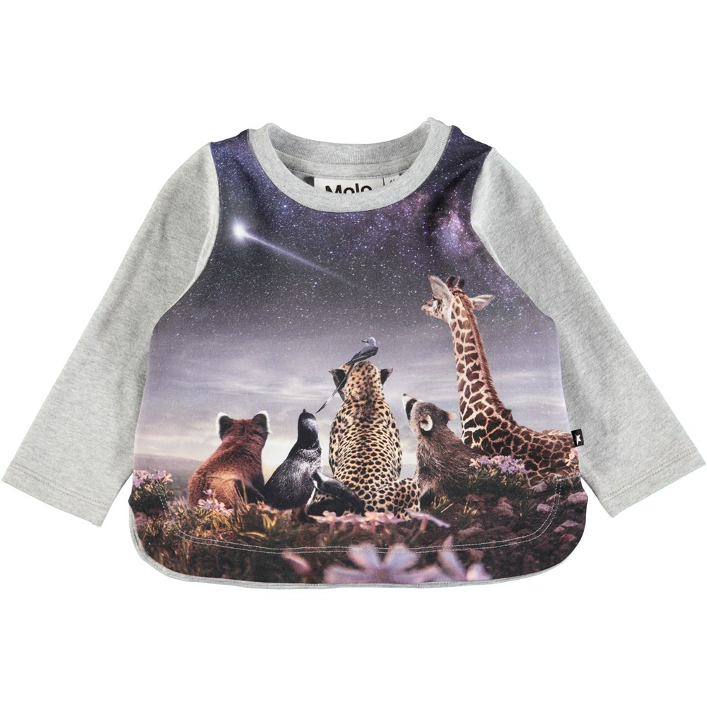 Eline - Wish Upon A Star Baby - Grey baby top with digital animal and starry sky print