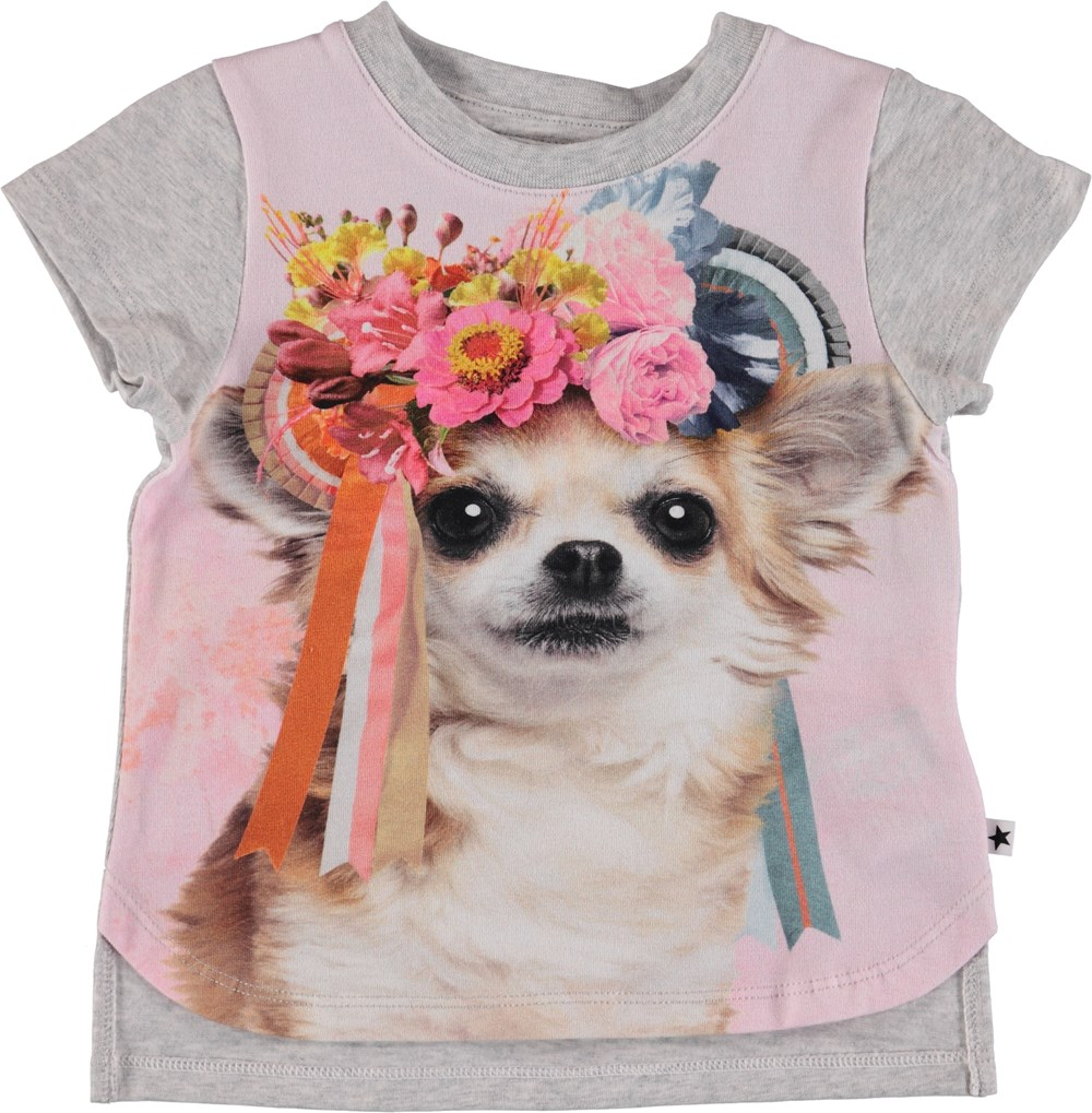 Erin - Chihuahua - Baby T-Shirt