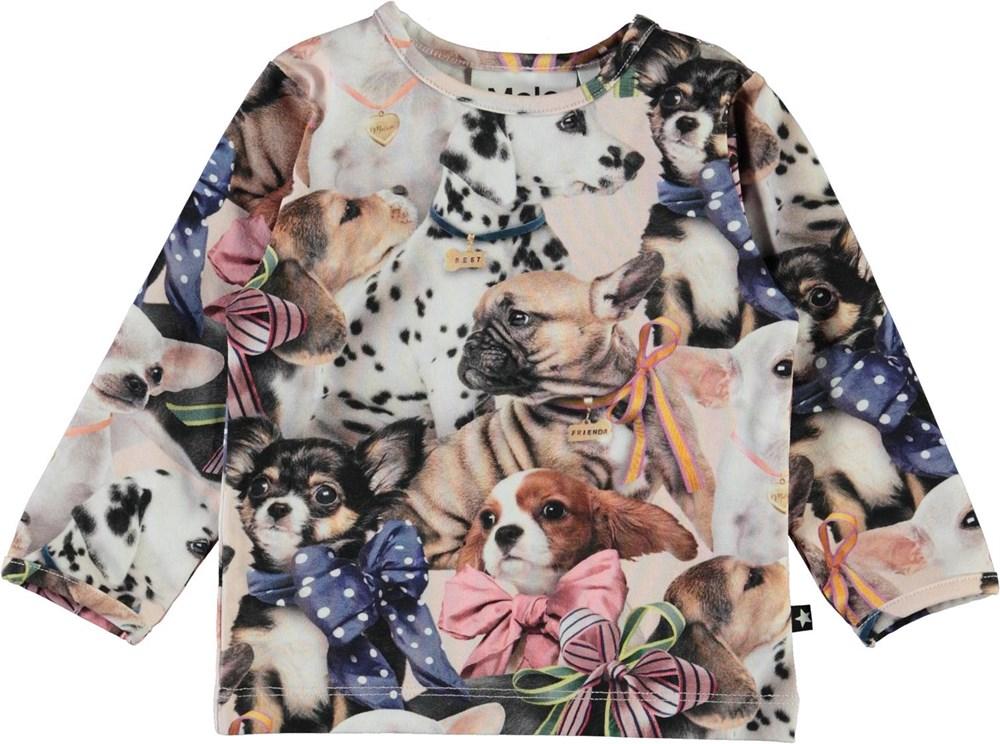 Eva -  Puppy Love - Organic baby top with dog print