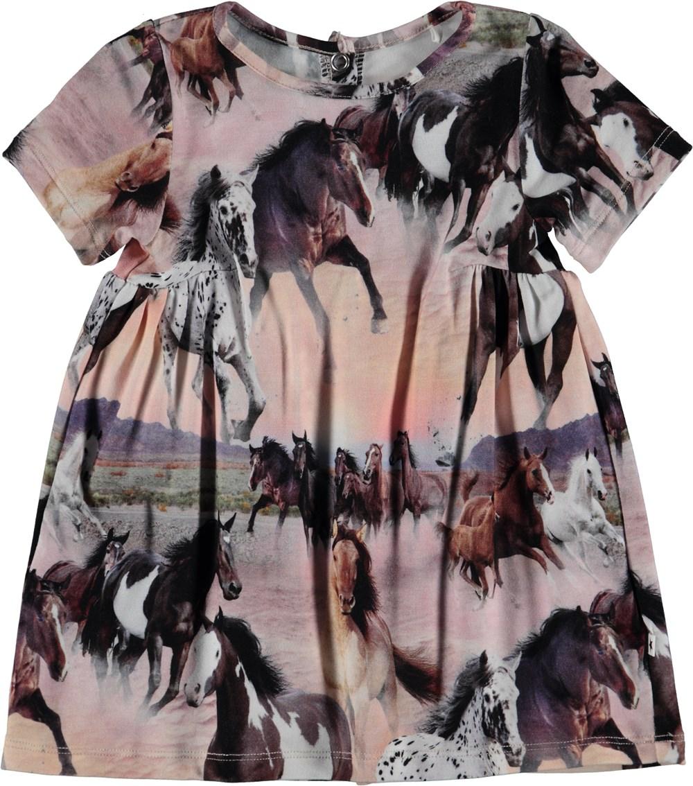Calypso - Wild Horses - Baby Kjole