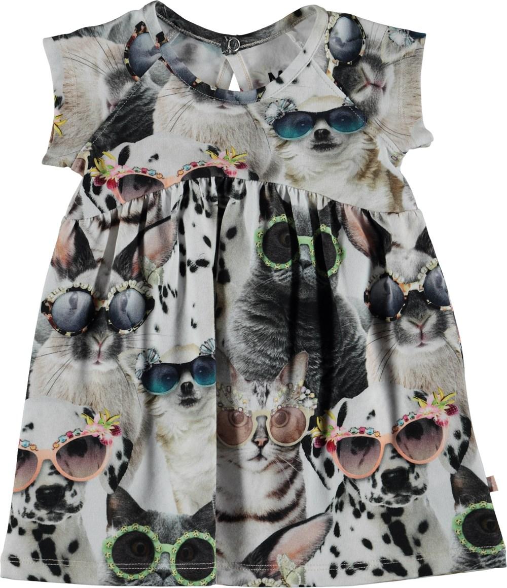 Cille - Sunny Funny - Baby kjole med print af dyr.
