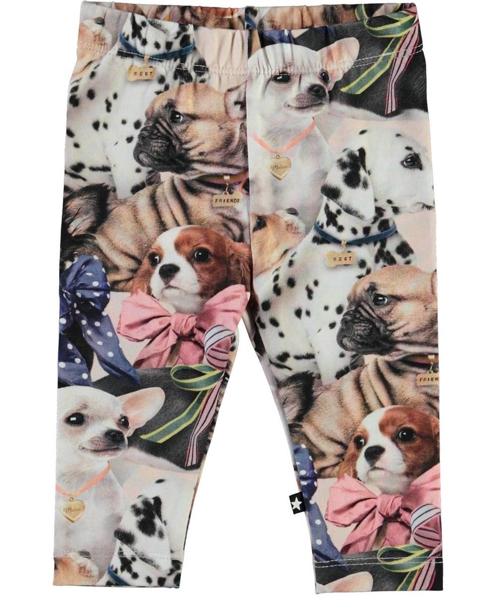 Stefanie -  Puppy Love - Økologiske baby leggings med hunde