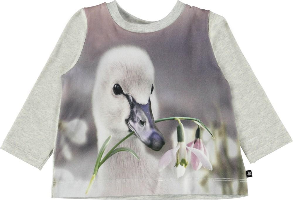 Ebby - Little Swan - Baby bluse med svaneunge.