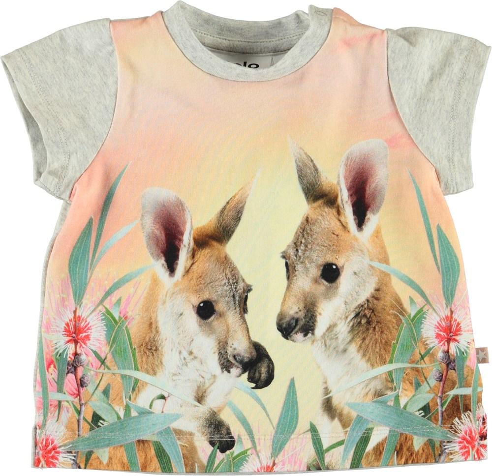 Elly - Cute Kangaroos - Grå baby t-shirt med kænguruer