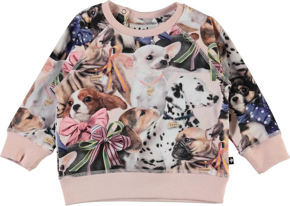 Elsa -  Puppy Love - Økologisk babybluse med hunde print