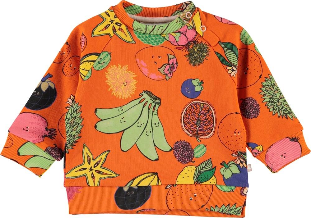 Dicte - Friendly Fruits - Orange baby sweatshirt med frugter