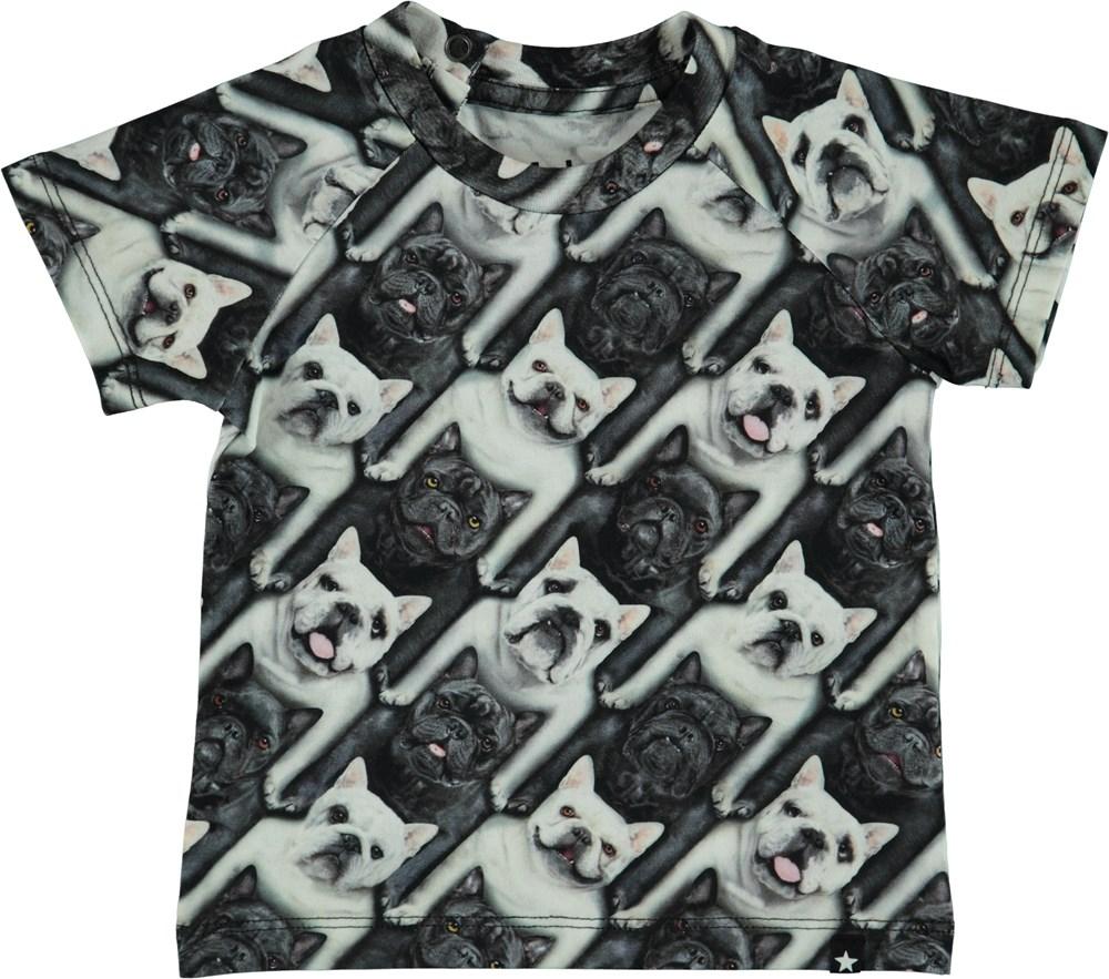 Emmett - English Bulldog - Baby T-Shirt
