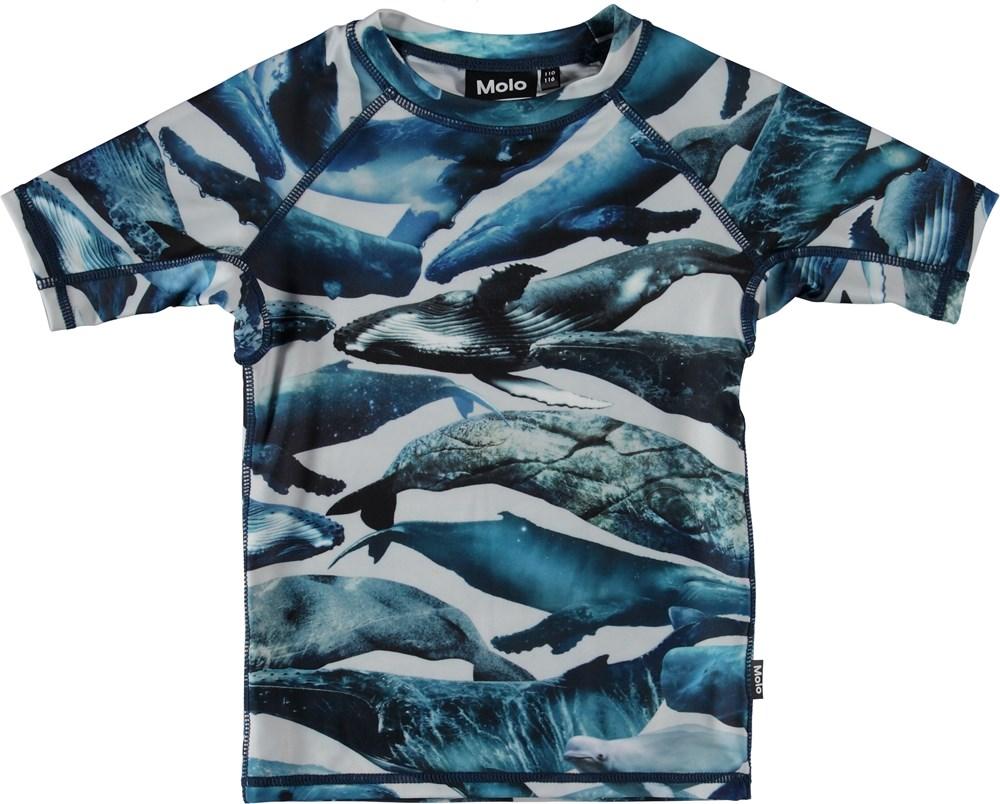 Neptune - Whales - Kortärmad badtröja med valar