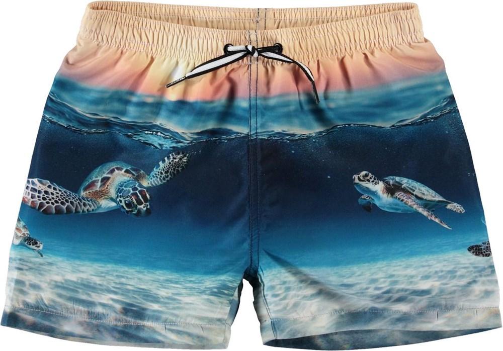 Niko - Sea Turtle Sunset - UV-shorts med sköldpaddor