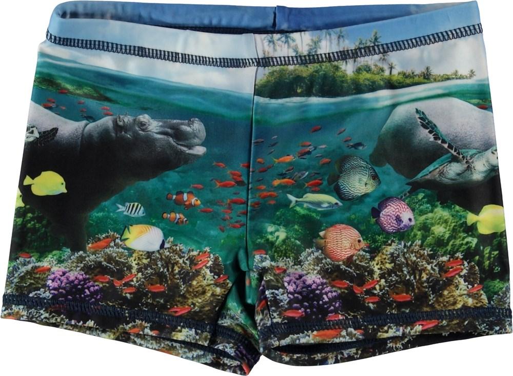 Norton Placed - Imagine - Korta badbyxor med havets djur.