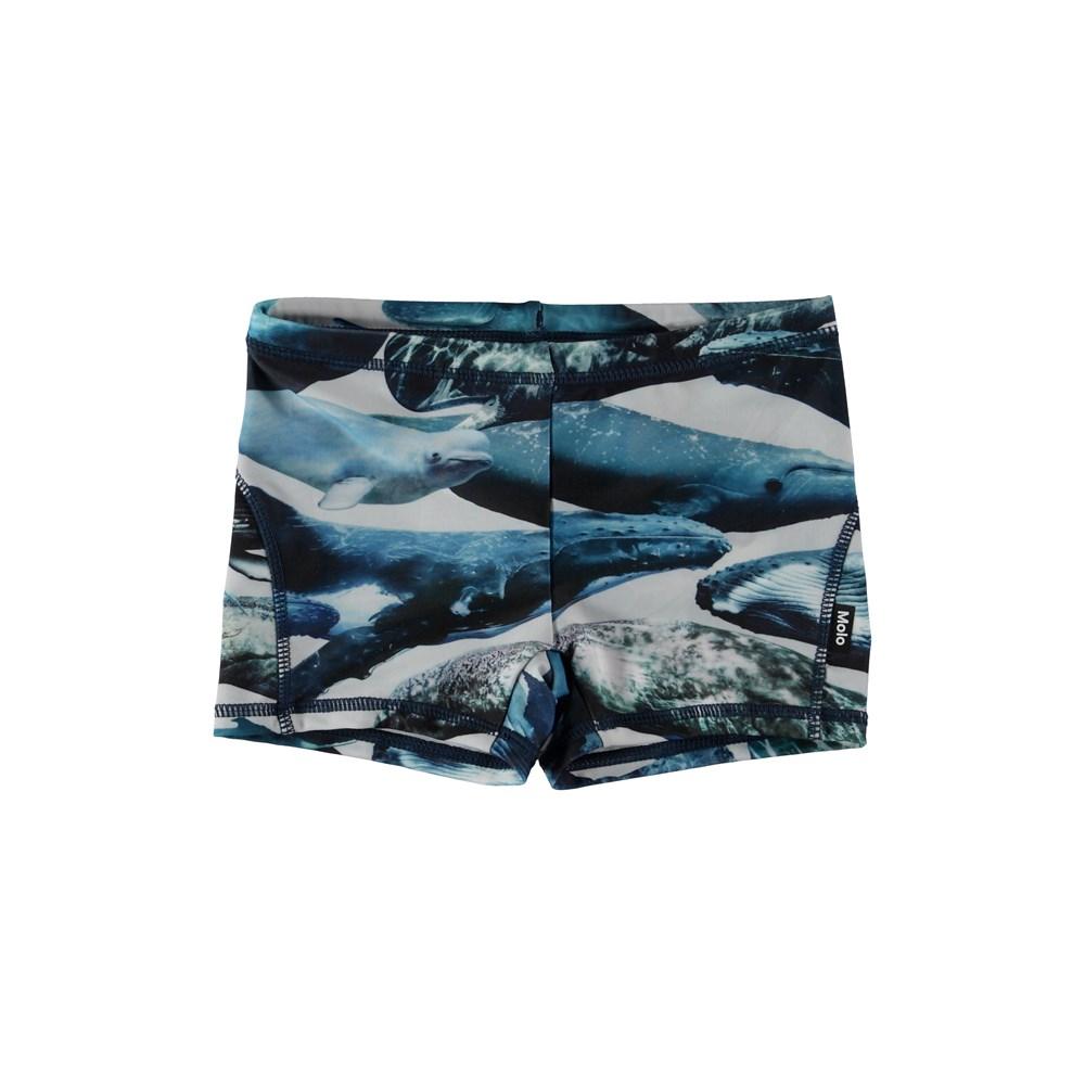 Norton - Whales - Korta badbyxor med valar.