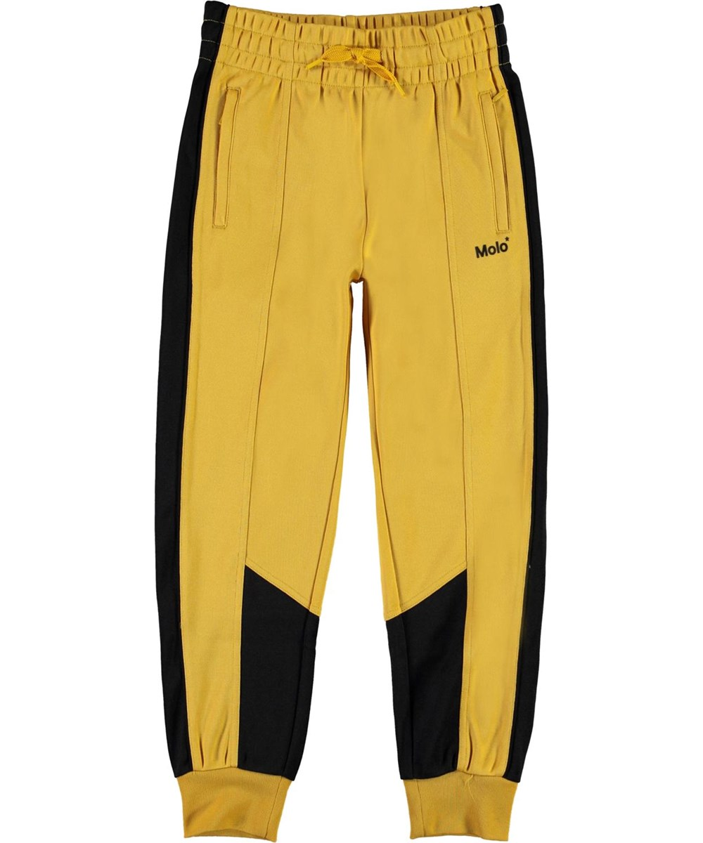 Albie - Nugget Gold - Yellow and black sports trousers